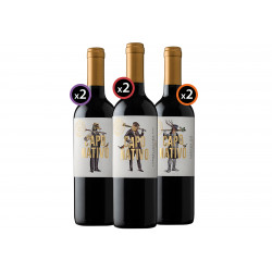 Pack Capo Nativo 6 botellas...